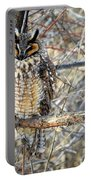Long Eared Owl Resting Portable Battery Charger