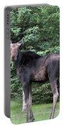 Long Legged Moose Portable Battery Charger