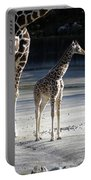 Long Legs - Giraffe Portable Battery Charger