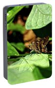 Long Tail Skipper Butterfly 1 Portable Battery Charger