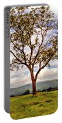 Long Tree Shenandoah Valley West Virginia  Portable Battery Charger