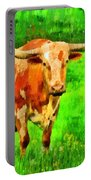 Longhorn 2 - Pa Portable Battery Charger