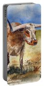 Longhorn Portable Battery Charger
