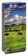 Longhorns At The Ranch Portable Battery Charger