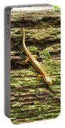 Longtailed Salamander Portable Battery Charger