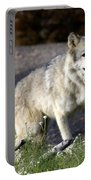 Lonly Wolf Portable Battery Charger