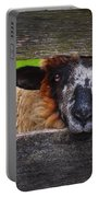 Lookin At Ewe Portable Battery Charger