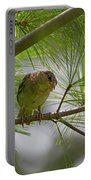 Looking Down - Common Sparrow - Passer Domesticus Portable Battery Charger