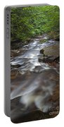 Looking Downstream Portable Battery Charger