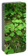 Looking For A Four-leaf Clover Portable Battery Charger