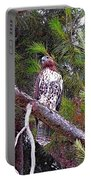 Looking For Prey - Red Tailed Hawk Portable Battery Charger