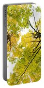 Looking Up At Fall Portable Battery Charger