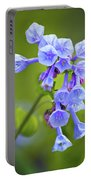 Looking Up At Virginia Bluebells  Portable Battery Charger