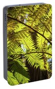Looking Up To A Beautiful Sunglowing Fern In A Tropical Forest Portable Battery Charger