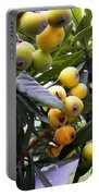 Loquat Exotic Tropical Fruit  2 Portable Battery Charger