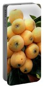 Loquat Exotic Tropical Fruit 4 Portable Battery Charger