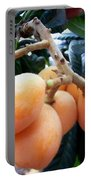 Loquat Exotic Tropical Fruit  Portable Battery Charger