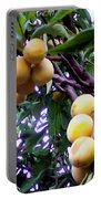 Loquats In The Tree 1 Portable Battery Charger
