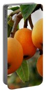 Loquats In The Tree 2 Portable Battery Charger