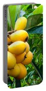 Loquats In The Tree 4 Portable Battery Charger