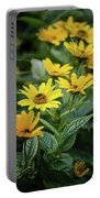 Loraine Sunshine 2 Portable Battery Charger