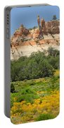 D14492-los Gigantes  Portable Battery Charger