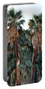Thousand Palms Oasis  Portable Battery Charger