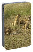Lotsa Lions Portable Battery Charger