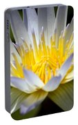 Lotus 10 Portable Battery Charger