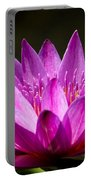 Lotus 8 Portable Battery Charger