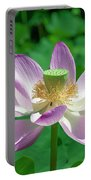 Lotus--fading IIi Dl0081 Portable Battery Charger