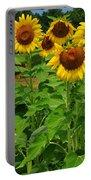Louisa, Va. Sunflowers 3 Portable Battery Charger