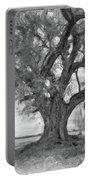Louisiana Dreamin' Monochrome Portable Battery Charger
