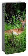 Lounging Fawn Portable Battery Charger