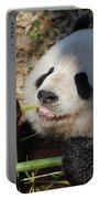 Lovable Giant Panda Bear With Big Paws Portable Battery Charger