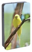 Lovable Yellow Budgie Parakeet Bird Up Close Portable Battery Charger