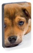 Love Me Puppy Portable Battery Charger