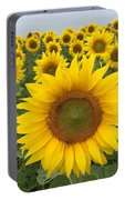 Love Sunflowers Portable Battery Charger