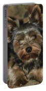 Loveable Yorkie  Portable Battery Charger