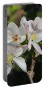 Lovely Apple Blossoms Portable Battery Charger