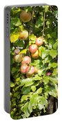 Lovely Apples On The Tree Portable Battery Charger