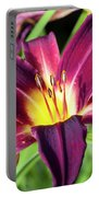 Lovely Day Lily Portable Battery Charger