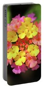 Lovely Lantana Portable Battery Charger