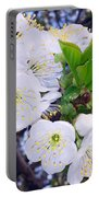 Lovely Spring Portable Battery Charger
