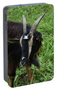 Lovely Up Close Look Into The Face Of A Pygmy Goat Portable Battery Charger