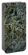 Low Tide Seaweed Portable Battery Charger