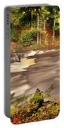 Lower Tahquamenon Falls 1 Portable Battery Charger
