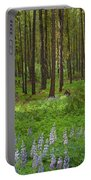 Lupine Carpet Portable Battery Charger