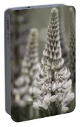 Lupine Muted Portable Battery Charger