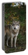 Lupine Pose Portable Battery Charger